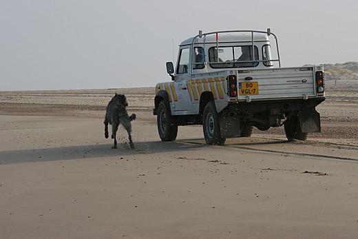 Auto jagen am Strand