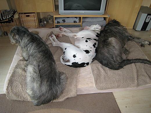 Ist die Matratze doch zu klein?
